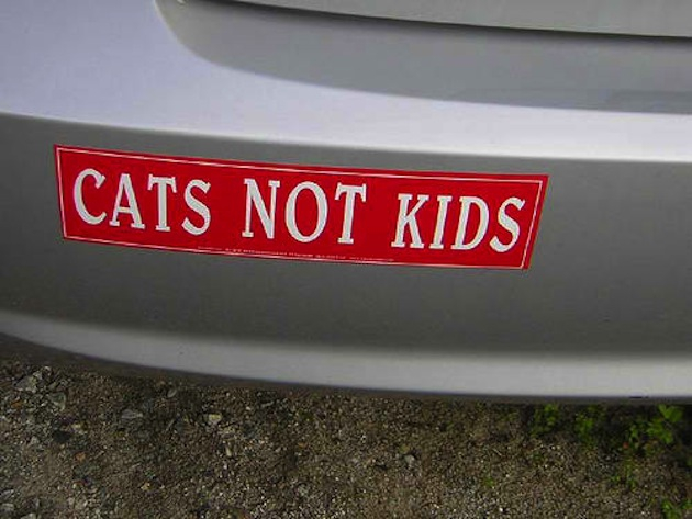 Crazy Bumper Stickers That Make You LOL