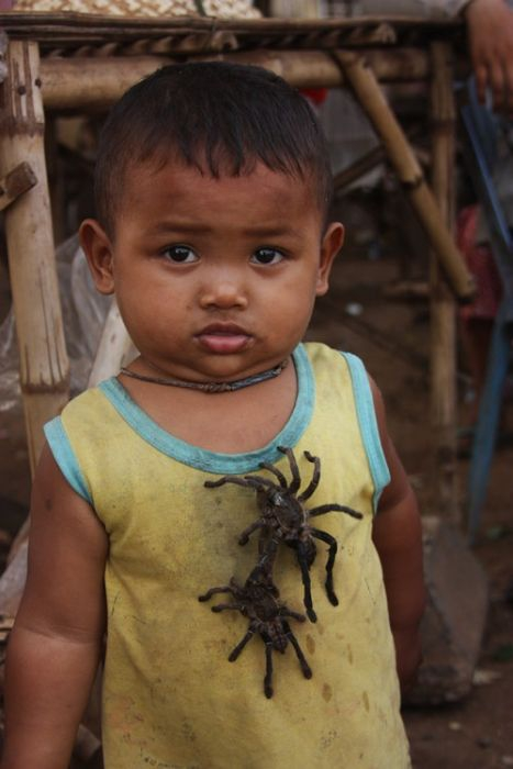 Cambodian Fried Spiders