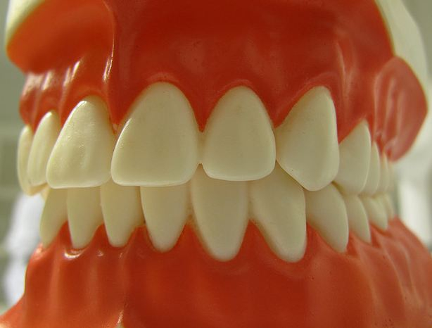 Woman Loses Tooth In Burglar's Hand