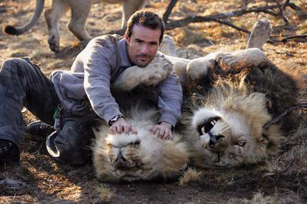 Unbelievable Friendship Between Man and Lions!