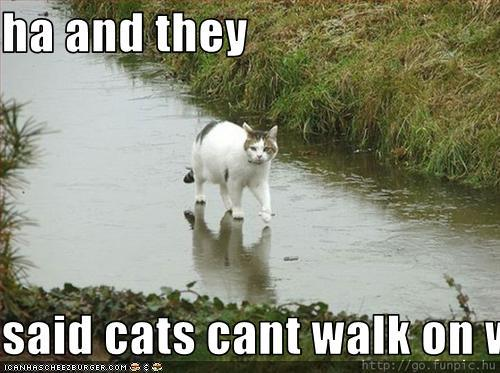 Only Jesus Can Walk on Water?
