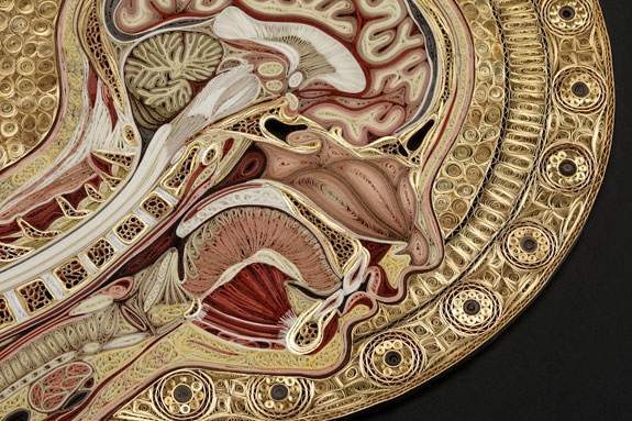 Unique Human Anatomy Art.