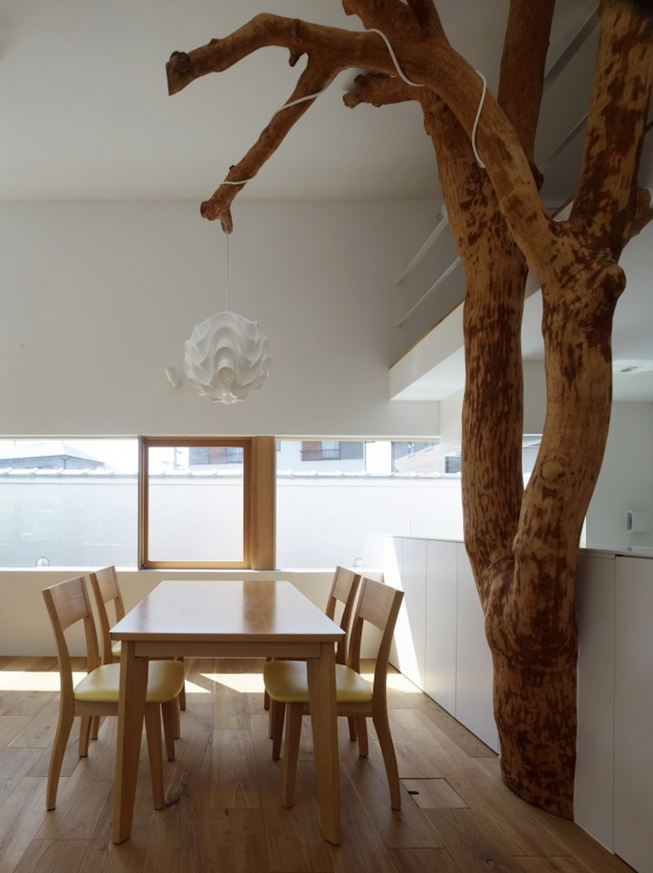 Beautiful Trees Fill a Modern Room with Childhood Memories