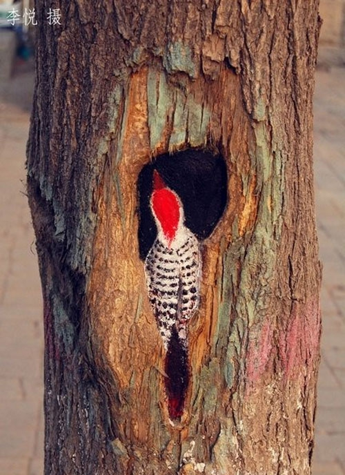 Painter Turns Tree Holes into Works of Art