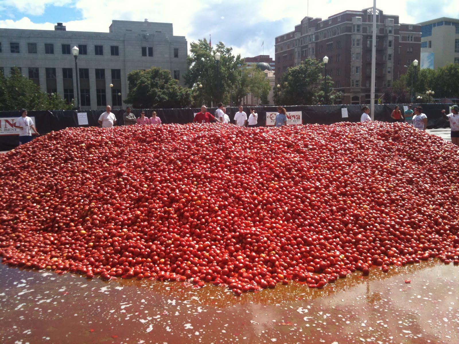 Thousands of Tomatoes