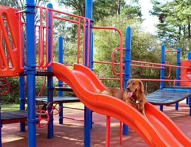 Laying On The Slide