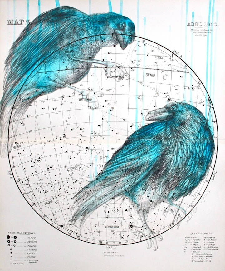 Birds Painted Into Celestial Maps