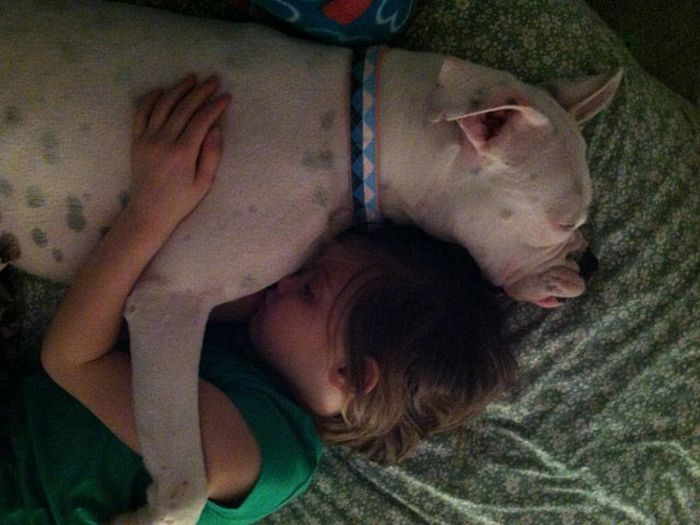 Big Pup Sleeping With Girl