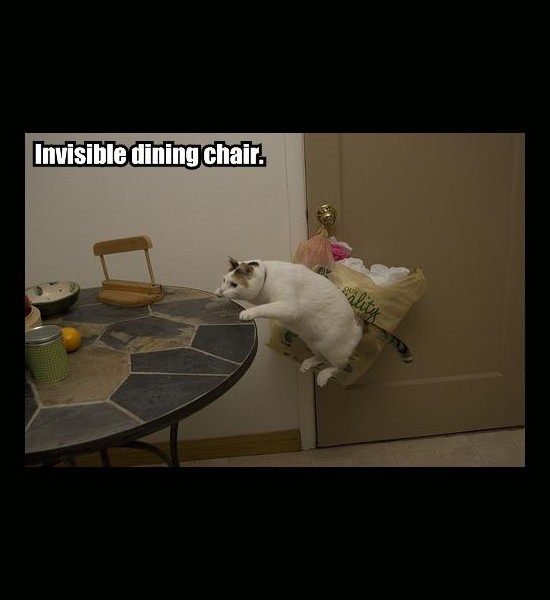 Invisible Chair