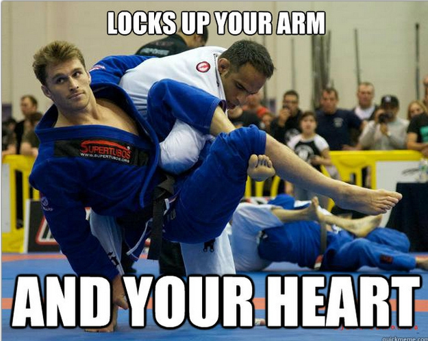Locks Up Your Heart
