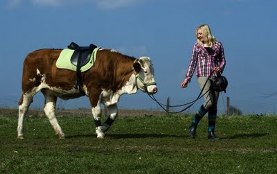 walking Her Cow