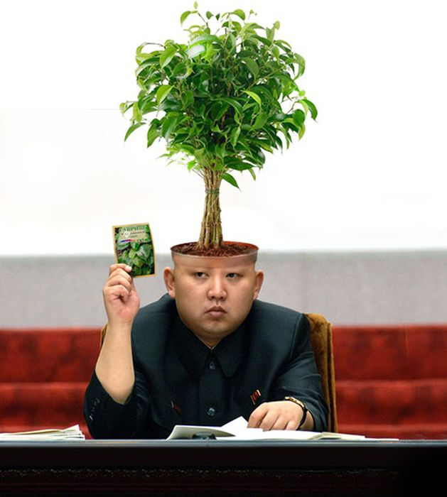 Kim Jong-Un Tree Head