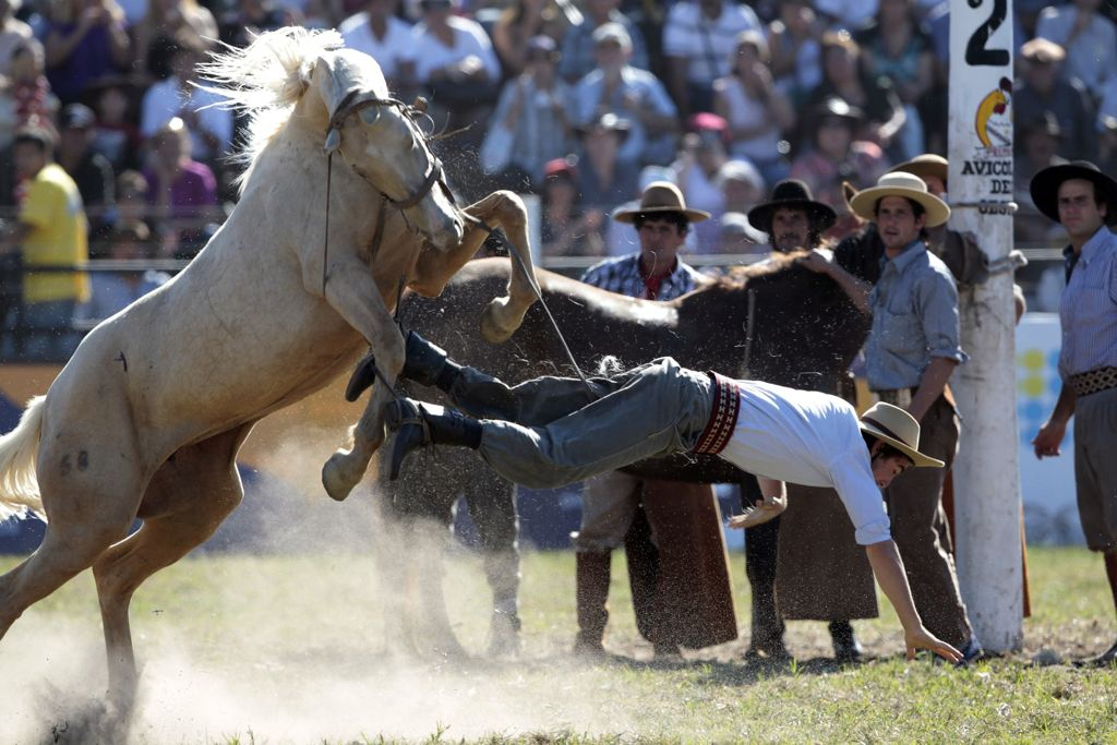 Cowboy Tossed Off Horse