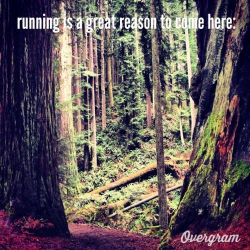 Get out for a run