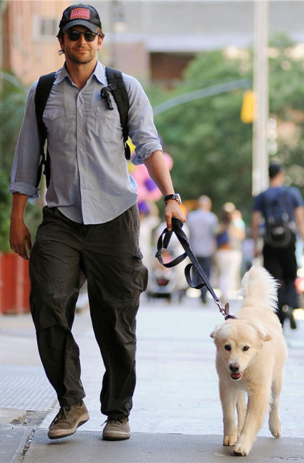 Bradley Cooper and Puppy... Awww