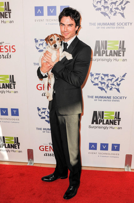 Ian Somerhalder with Puppy