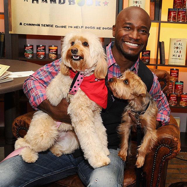 Taye Diggs and Two Puppies