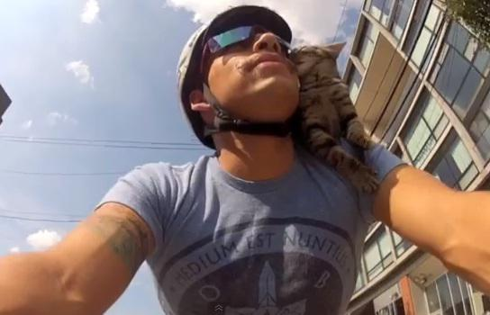 Man and Cat Ride Bike Together