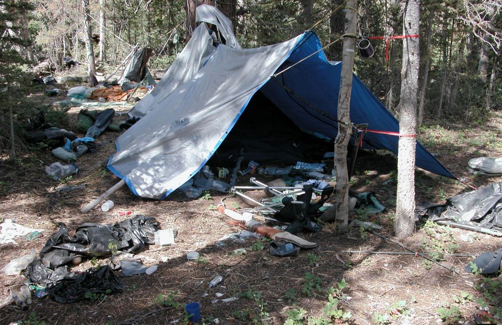 Troy James Camp site