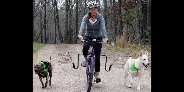 bike dog walker