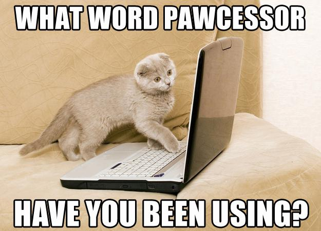What word pawcessor are you using?