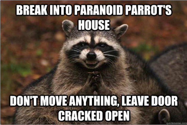Evil Racoon is Paranoid Parrot's worst nightmare!