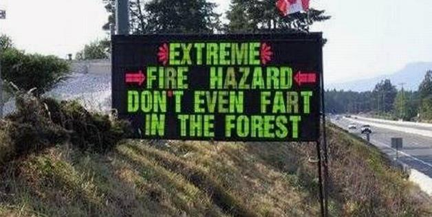 Don't Fart You Might Start A Forest Fire