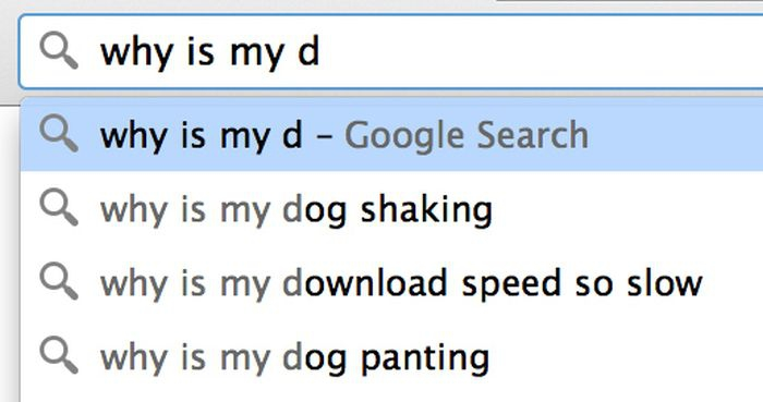 Google search: why is my d