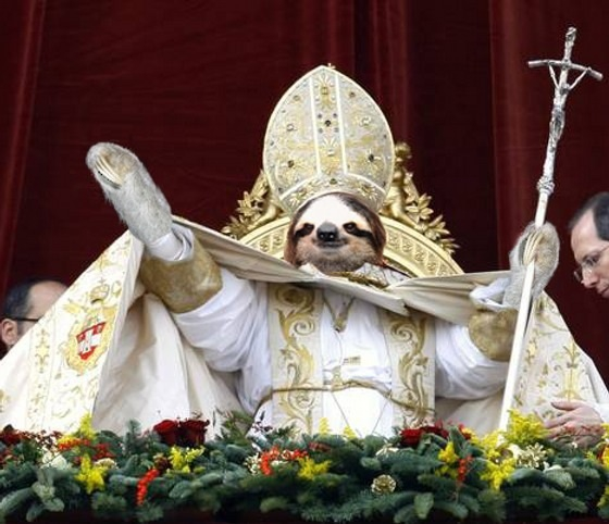 Who Knew Sloths Were So Wealthy in LOL's?