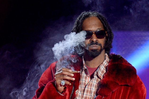 Snoop Lion's 420 Festival Was Mad Chill But Still Shut Down