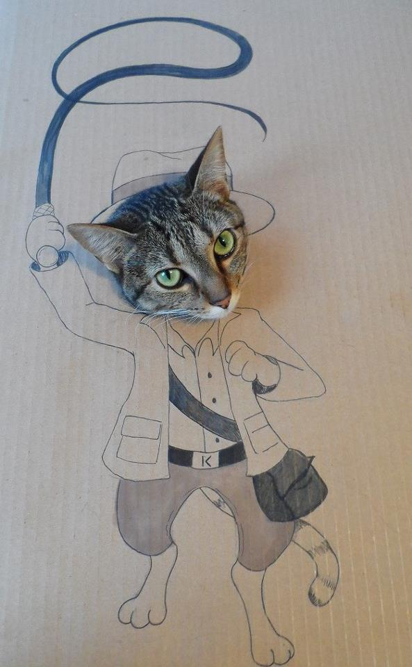 Indiana Jones Cat