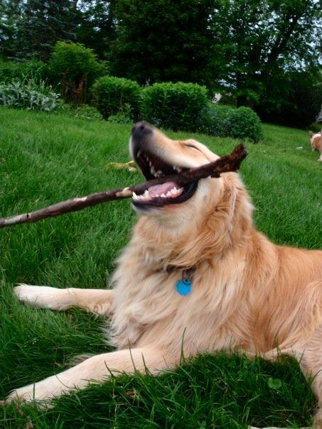 Yesss! The Stick!