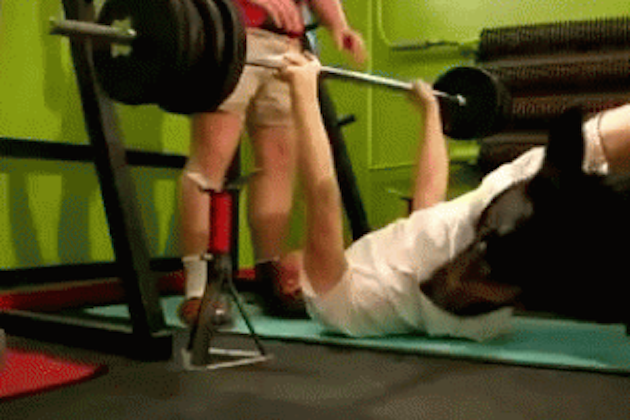 14 Hilariously Unexpected GIFs