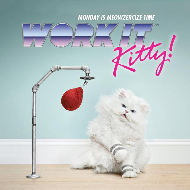 Work It Kitty!