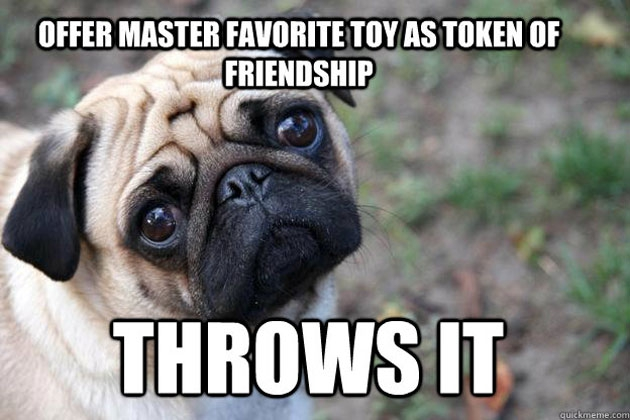 The Funniest 'First World Dog Problems' Memes