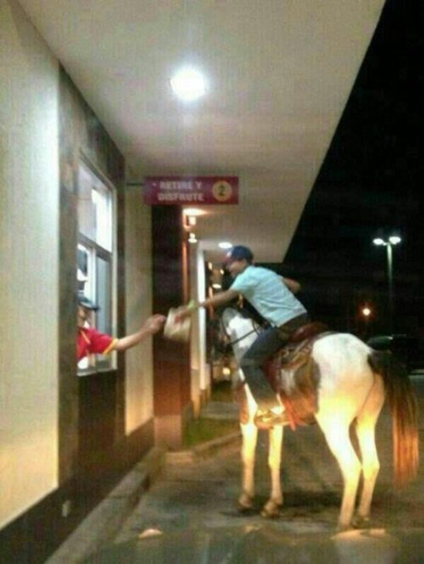 Drive Through Horse
