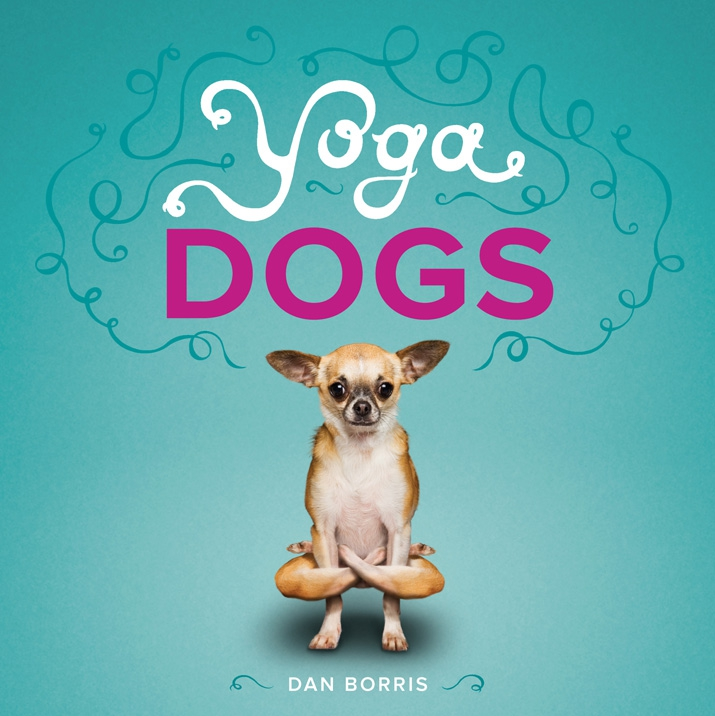 Hilarious Yoga Dogs!