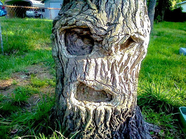 20 Unique Faces In 20 Unlikely And Hidden Places