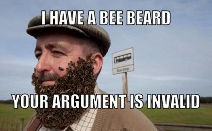 I have a bee beard
