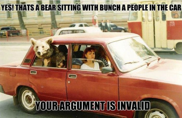 Yes! That's a bear sitting with bunch of people in the car
