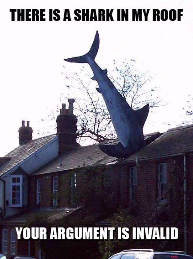 There is a shark in my roof