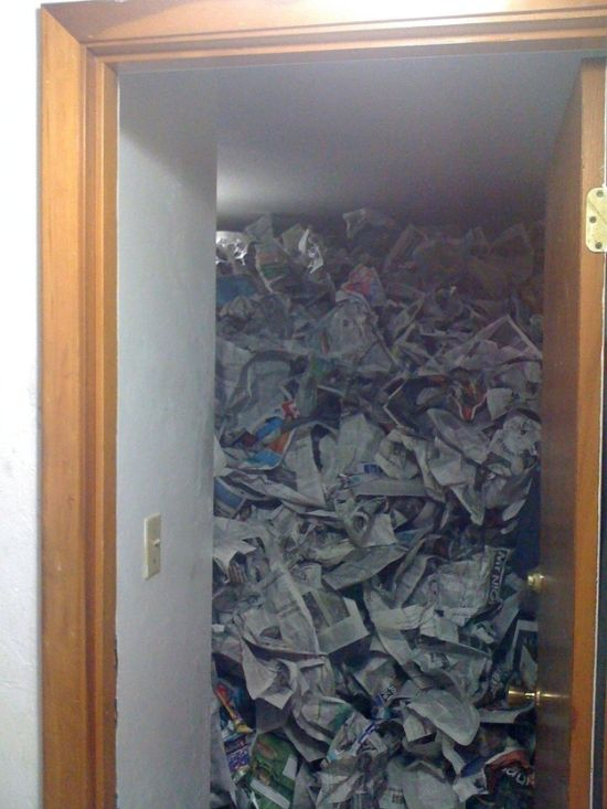 The roommate who somehow found this much newspaper