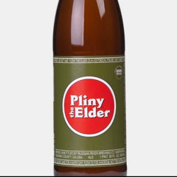 Pliny the Elder (Russian River Brewing Co.)