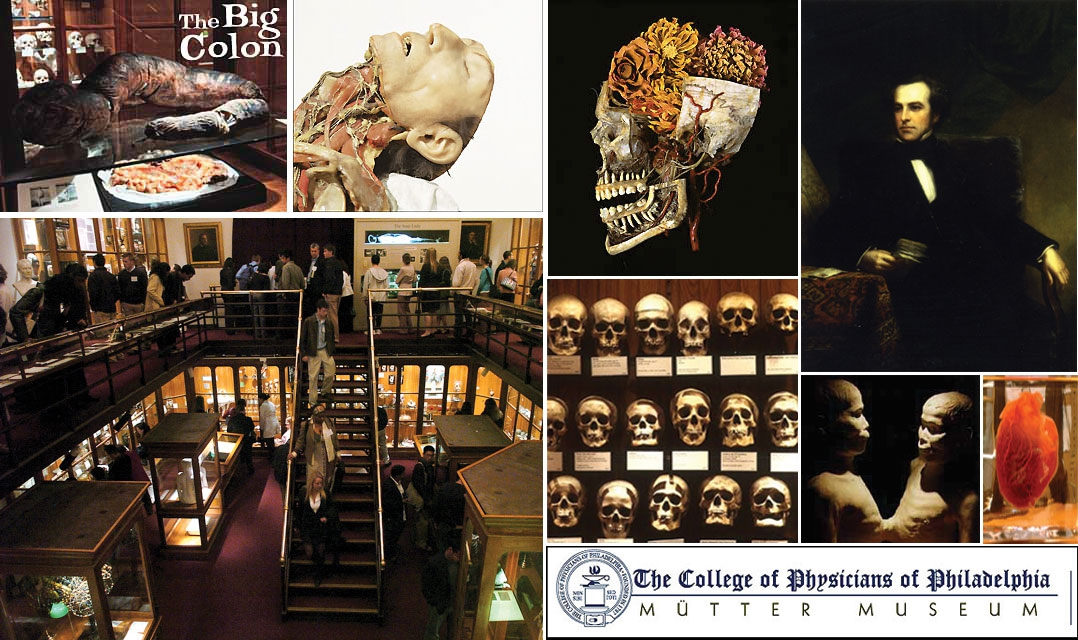Worlds Freakiest Medical Museums.