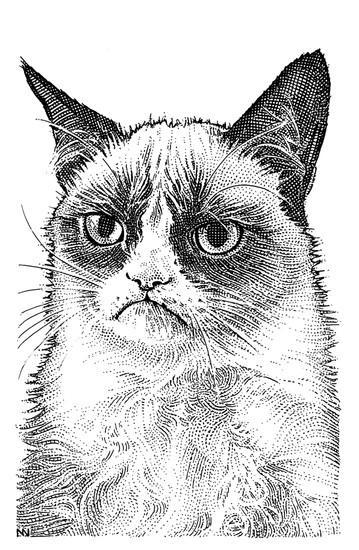 Grumpy Cat's Wall Street Journal stipple portrait