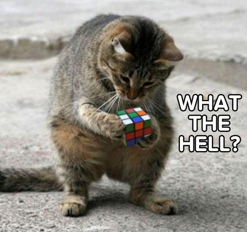 Rubik Cube? What?