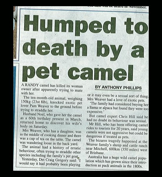 Humped To Death
