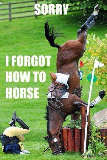 Forgot How To Horse