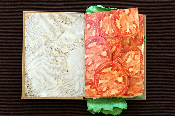 Feeling Hungry? Enjoy This Simply Delicious Sandwich Book!