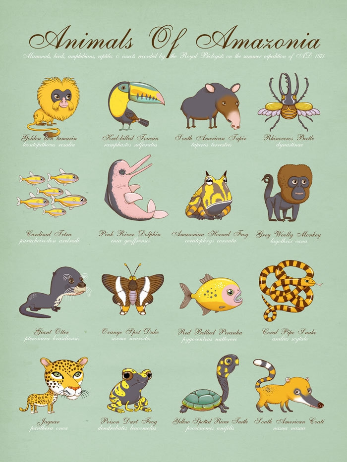 Playful Posters Feature Animals Around the World